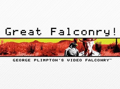 Falconry Shirt
